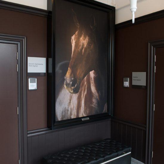 grand cadre noir avec photo cheval , murs brun foncés, lustre blanc