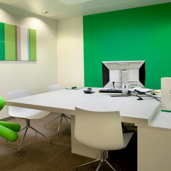 green wall, white square office, green dog